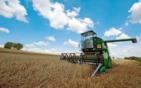 """Imprese agricole. Bessi: """"Domanda Unica, in arrivo 200 milioni per gli agricoltori in difficoltà"""""""